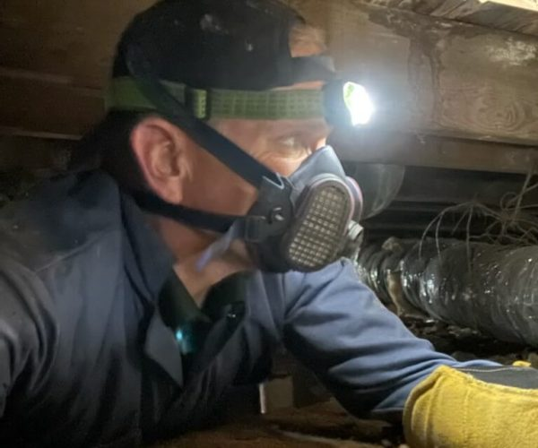 guardian-inspections-home-inspection-crawlspace